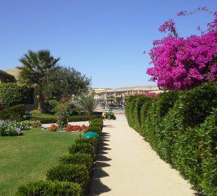 Gepflegte Gartenanlage Three Corners Fayrouz Plaza Beach Resort
