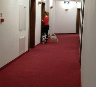 Hotel Buczynski Medical Spa