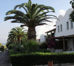 Garten AKS Annabelle Beach Resort