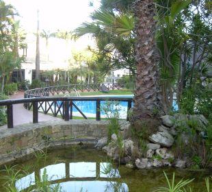 Gartenanlage Hotel BlueBay Banús