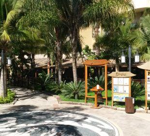 Gartenanlage Hotel Royal Dragon
