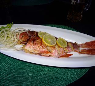 Restaurant Amal Villa
