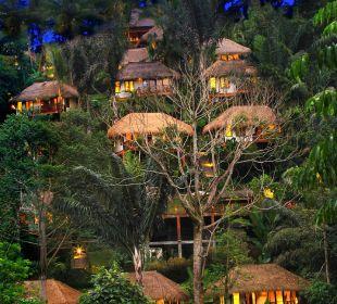 Overview Hotel Nandini Bali Jungle Resort & Spa