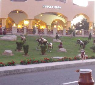 Eingangsbereich Jungle Aqua Park