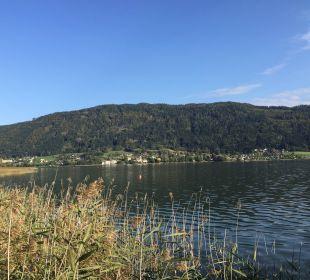 Blick nach links auf den See Hotel Urbani Ossiacher See