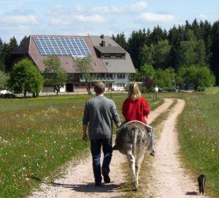 Eselreiten vor dem Oberjosenhof Ferienbauernhof Oberjosenhof