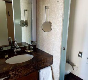 Waschbecken und WC Pullman Dresden Newa