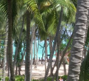 Super Ausblick Hotel Vista Sol Punta Cana