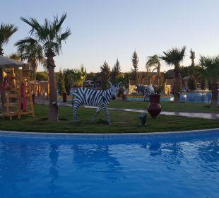 Überall Tiere  Jungle Aqua Park