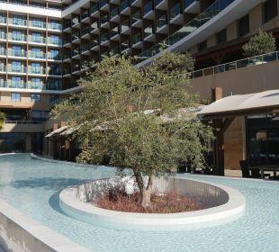 Ausschnitt von einem der Pools vom Hotel Aska Lara Aska Lara Resort & Spa