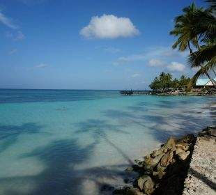 Strandlandschaft vormittags Dreams La Romana Resort & Spa