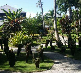 Gartenlandschaft  Iberostar Bávaro Suites