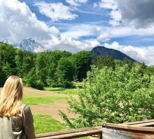 Ausblick Alm- & Wellnesshotel Alpenhof