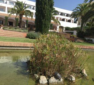 Naturteich und Frühstücksterasse im Hintergrund Fuerte Conil & Costa Luz Resort