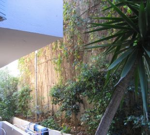 Blick von Zimmer 113 auf Zimmer 114 und Mauer Hotel Corissia Beach