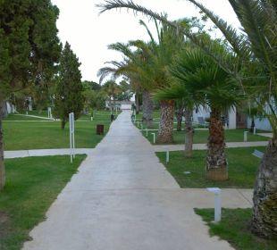 Hotelanlage  COOEE Cala Llenya Resort Ibiza