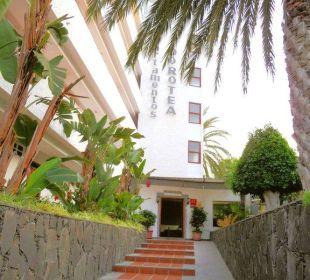 Treppen zu der Rezeption  Hotel Dorotea