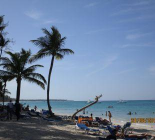 Am Strand  Hotel Vista Sol Punta Cana