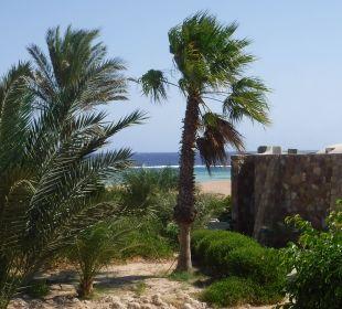 Blick aus dem Zimmer Three Corners Fayrouz Plaza Beach Resort