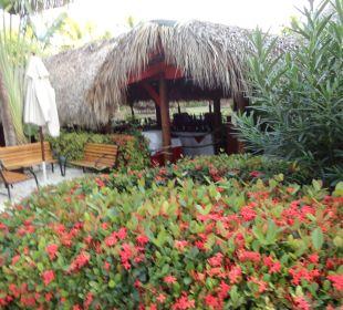 Restaurant Hotel Natura Park Beach Eco Resort & Spa