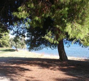 Strand , Weg ins Dorf Hotel Amari
