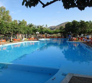 Toller Pool Hotel Corissia Beach