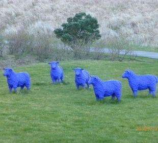 Die blauen Schafe im Garten Strandhotel Dünenmeer