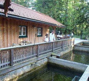 Restaurant Romantik Hotel Im Weissen Rössl
