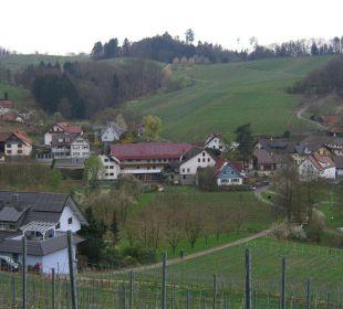 Waldulm mit Blick von den Weinbergen Faxe Schwarzwälder Hof Waldulm