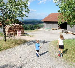 Weg von den Ferienwohnungen zum Bauernhof Oberulpointhof