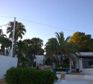Blick zur Lobby/Haupteingang  COOEE Cala Llenya Resort Ibiza