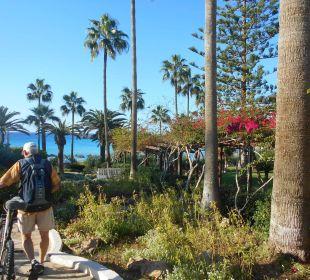 Weg durch die Hotelanlage Hotel Nissi Beach Resort