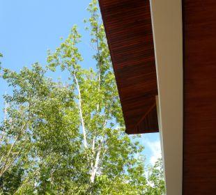 Ausblick in die freie Natur. Guest House Green Garden House