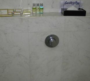 Toilette Clarks Shiraz Hotel