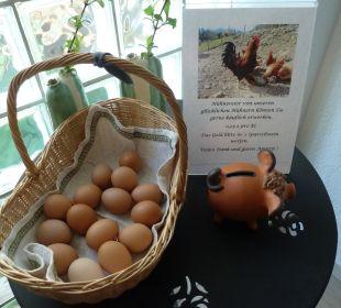 Eier von glücklichen Hühnern Gästehaus Martinsklause