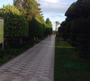 Garten Hotel Concorde De Luxe Resort