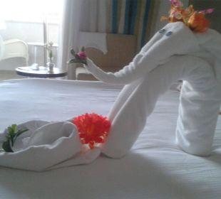 Elefantenüberraschung Sunis Hotel Evren Beach Resort & Spa