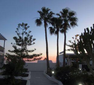 Palmenblick Bungalows & Appartements Playamar