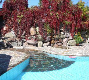 Herbstfarben am Pool  Hotel Lichtenstern