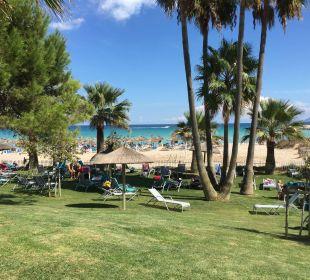 Blick vom Garten auf den breiten Strand Aparthotel Esperanza Park