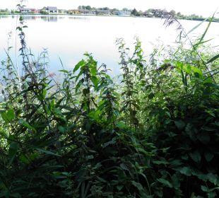 Der See im Feriendorf