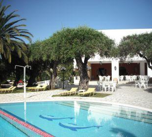 Sehr gepflegter Pool mit Frühstücksveranda Hotel Paradise Corfu