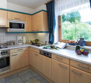 Küche Apartment Leutasch Landhaus Karoline Landhaus Karoline Wohlfühl-Ferienwohnungen