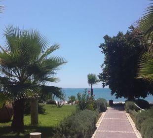 Von Hotel zum Strand eine sehr gepflegte Anlage  Hotel Horus Paradise Luxury Club