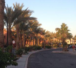 Blick von der Straße Sensimar Makadi Hotel