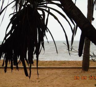 Blick aufs Meer Hotel Ranweli Holiday Village