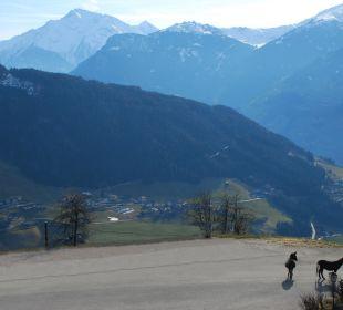Aussicht von der Hauptterrasse  Alpengasthof Enzianhof