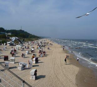 Strand ohne Ende.. Panorama Hotel Bansin