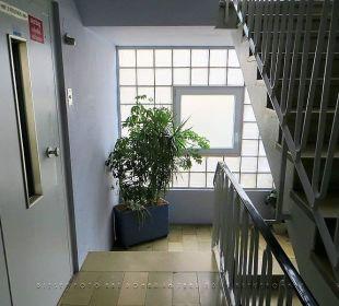Treppenhaus mit Fenster und Lift in der 2. Etage Hotel Kaiserhof