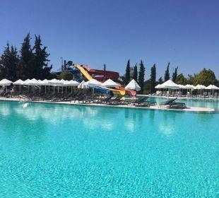 Pool Hotel Palm Wings Beach Resort